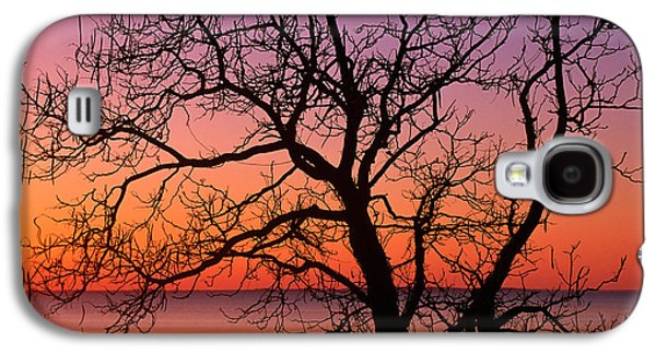 View Of Ocean Through Silhouetted Tree Galaxy S4 Case