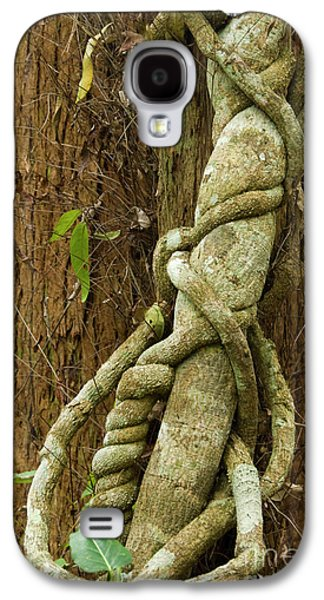 Galaxy S4 Case featuring the photograph Vine by Werner Padarin