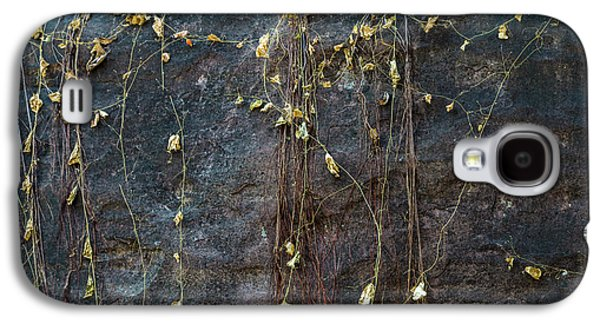 Galaxy S4 Case featuring the photograph Vines On Rock, Bhimbetka, 2016 by Hitendra SINKAR