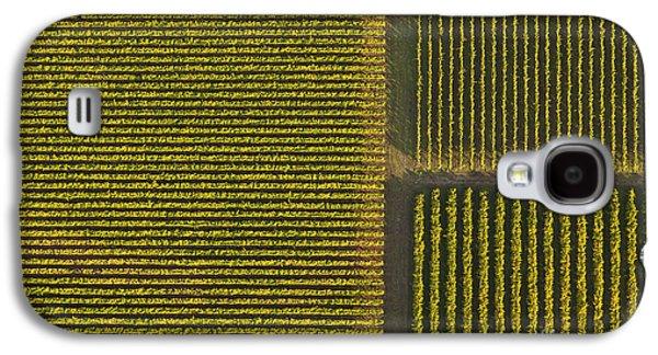 Vineyard From Above Galaxy S4 Case by Diane Diederich