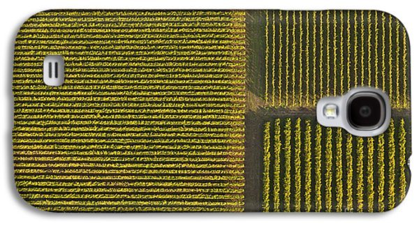 Vineyard From Above Galaxy S4 Case