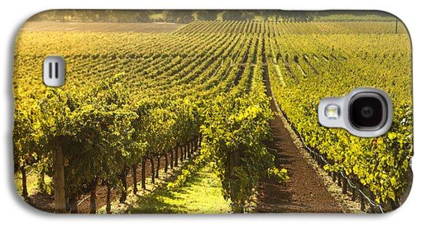 Vineyard In Napa Valley Galaxy S4 Case