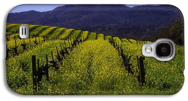 Vineyard Mustard Galaxy S4 Case by Garry Gay