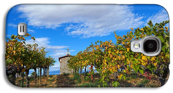 Vineyard Temple Galaxy S4 Case by Mike Dawson