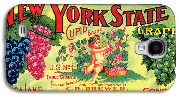 Vintage Concord Grape Packing Crate Label C. 1920 Galaxy S4 Case
