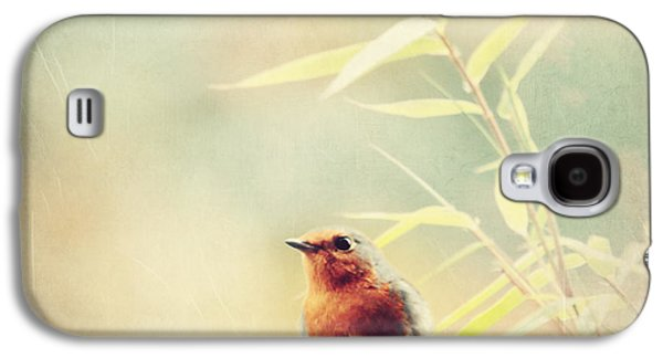 Vintage Robin 2 Galaxy S4 Case by Heike Hultsch