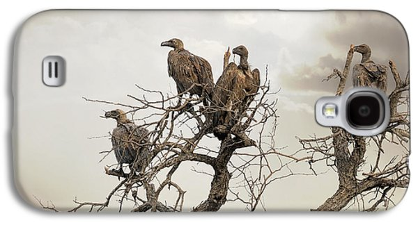 Vultures In A Dead Tree.  Galaxy S4 Case by Jane Rix