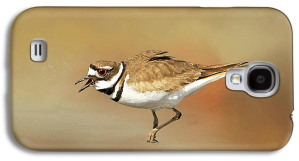 Wading Killdeer Galaxy S4 Case by Donna Kennedy
