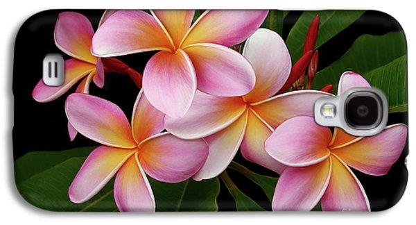 Wailua Sweet Love Texture Galaxy S4 Case