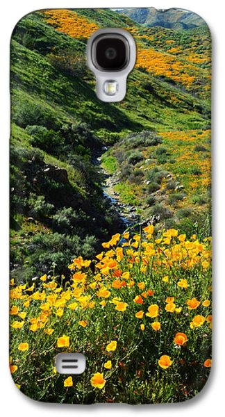 Walker Canyon Vista Galaxy S4 Case by Glenn McCarthy Art and Photography