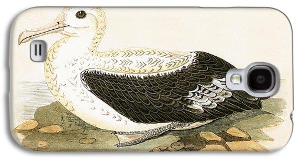 Wandering Albatross Galaxy S4 Case by English School