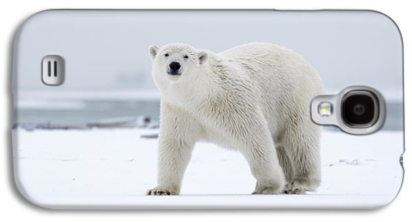 Watchful In The Arctic Galaxy S4 Case