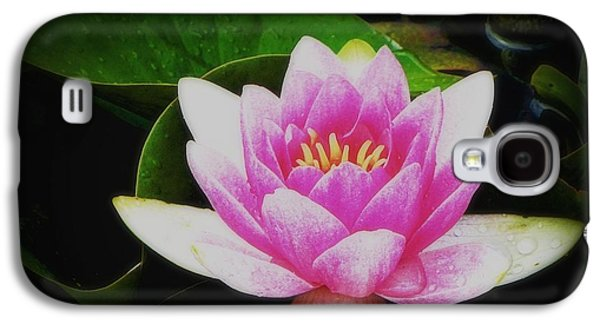 Galaxy S4 Case featuring the photograph Water Lily by Karen Shackles