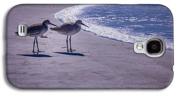 Sandpiper Galaxy S4 Case - We Stand Together by Marvin Spates