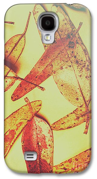 Weathered Autumn Leaves Galaxy S4 Case by Jorgo Photography - Wall Art Gallery