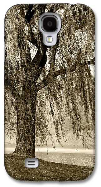Weeping Willow Mist Galaxy S4 Case by Carol F Austin