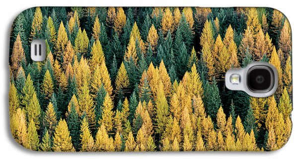 Western Larch Forest Galaxy S4 Case