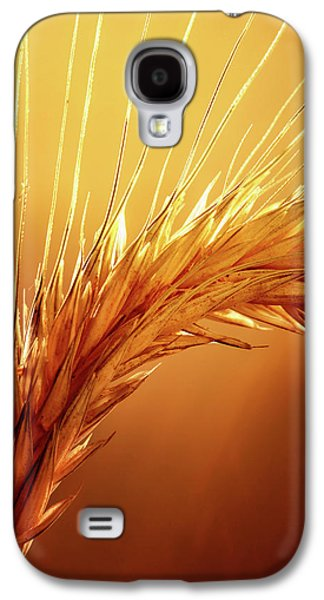 Nobody Galaxy S4 Case - Wheat Close-up by Johan Swanepoel