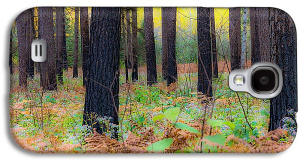 Whispering Woods Galaxy S4 Case by Mary Amerman