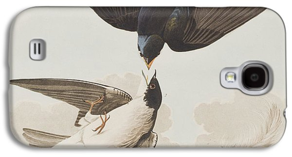 White-bellied Swallow Galaxy S4 Case