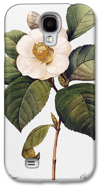 White Camellia Galaxy S4 Case by Granger