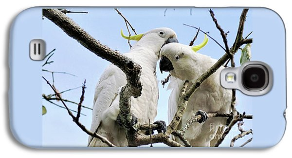 White Cockatoos Galaxy S4 Case by Kaye Menner