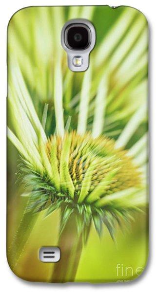 White Coneflower Galaxy S4 Case