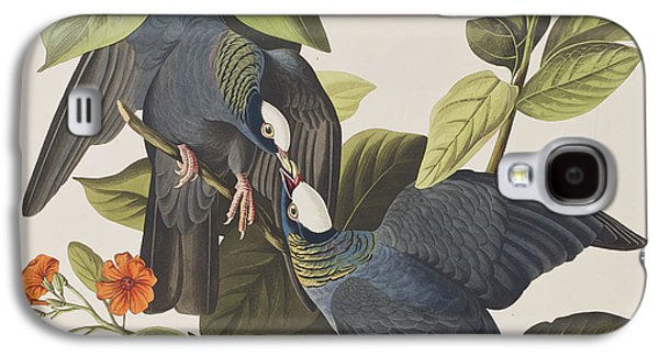 White Crowned Pigeon Galaxy S4 Case by John James Audubon