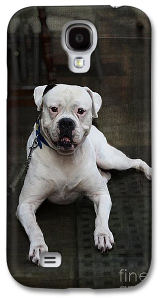 White Dog - Malaga Spain Galaxy S4 Case