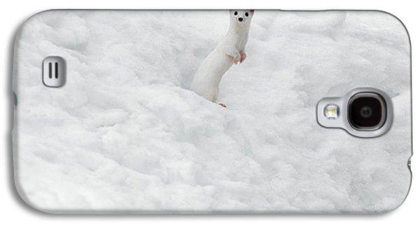 White Ermine  2 Galaxy S4 Case by Leland D Howard