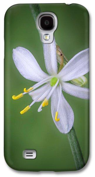 White Flower Galaxy S4 Case