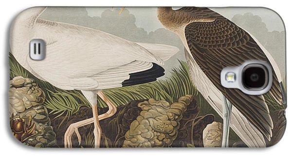 White Ibis Galaxy S4 Case by John James Audubon