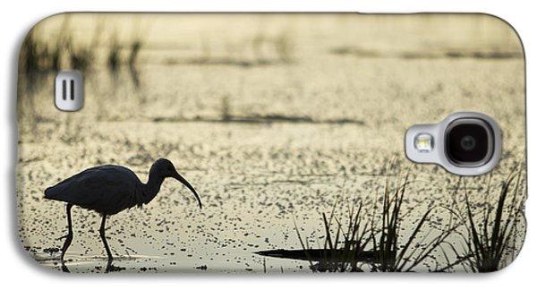 White Ibis Morning Hunt Galaxy S4 Case