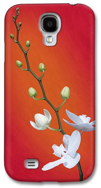 White Orchid Buds On Red Galaxy S4 Case by Tom Mc Nemar