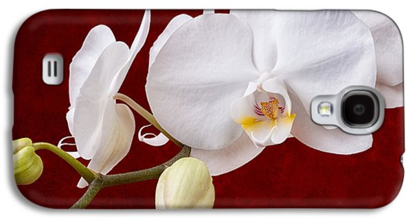 Orchid Galaxy S4 Case - White Orchid Closeup by Tom Mc Nemar