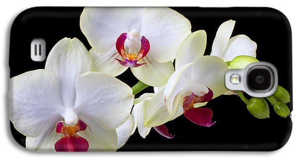 Orchid Galaxy S4 Case - White Orchids by Garry Gay