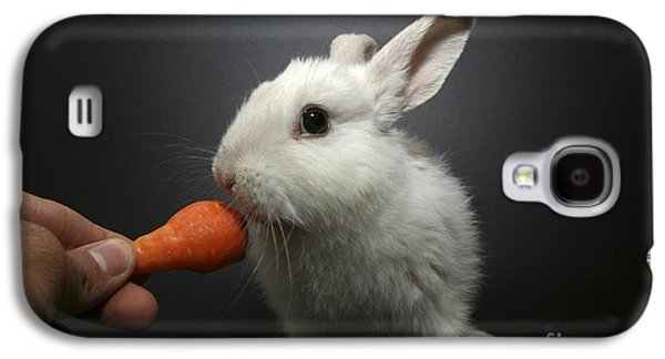 White Rabbit  Galaxy S4 Case by Yedidya yos mizrachi