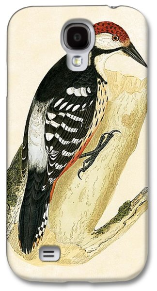 White Rumped Woodpecker Galaxy S4 Case by English School