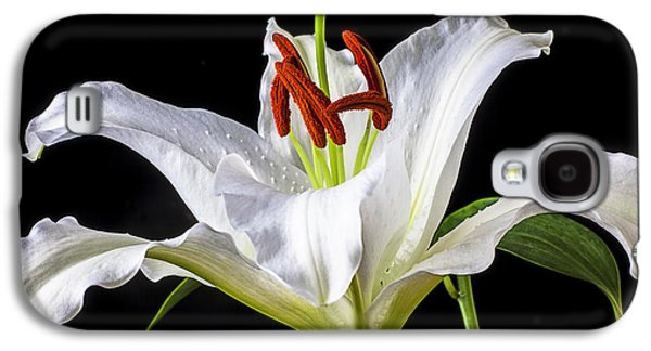 White Tiger Lily Still Life Galaxy S4 Case
