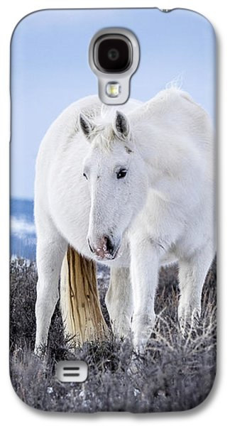 White Wild Horse Mystic Of Sand Wash Basin Galaxy S4 Case