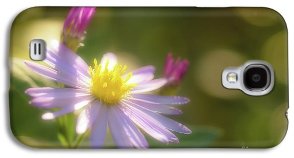 Wild Chrysanthemum Galaxy S4 Case by Tatsuya Atarashi