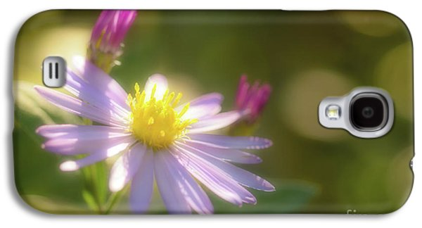 Wild Chrysanthemum Galaxy S4 Case