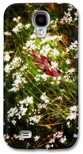 Garden Scene Galaxy S4 Cases - Wild Flowers Galaxy S4 Case by Stylianos Kleanthous
