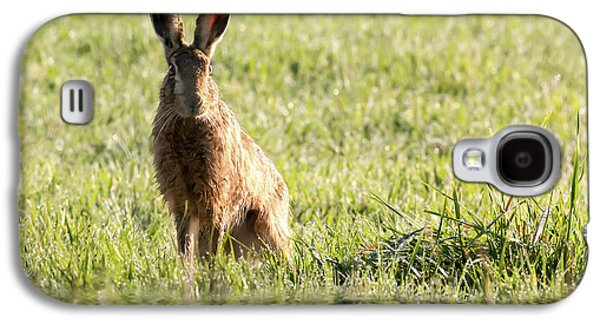 Wild Hare Sat Next To Water Galaxy S4 Case by Simon Bratt Photography LRPS