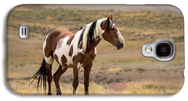 Wild Mustang Stallion Picasso Of Sand Wash Basin Galaxy S4 Case