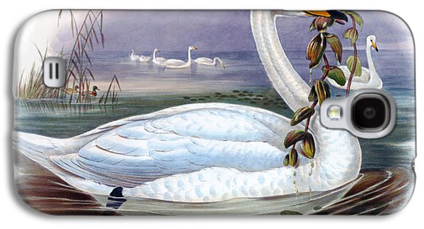 Wild Swan Antique Bird Print The Birds Of Great Britain Galaxy S4 Case by Orchard Arts