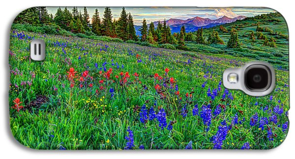 Wildflower Hill Galaxy S4 Case by Scott Mahon