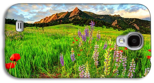 Wildflower Mix Galaxy S4 Case by Scott Mahon