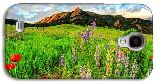 Wildflower Mix Galaxy S4 Case by Scott Mahon