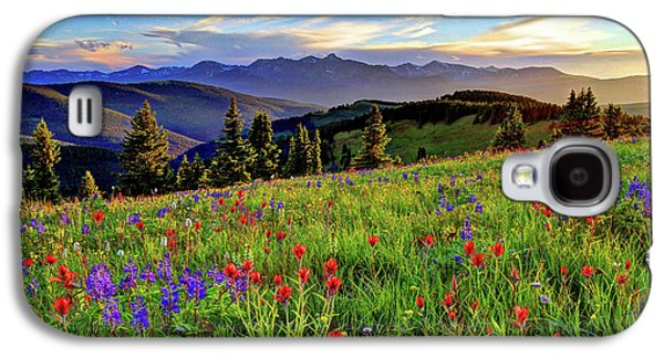 Wildflower Sunset Hill Galaxy S4 Case by Scott Mahon